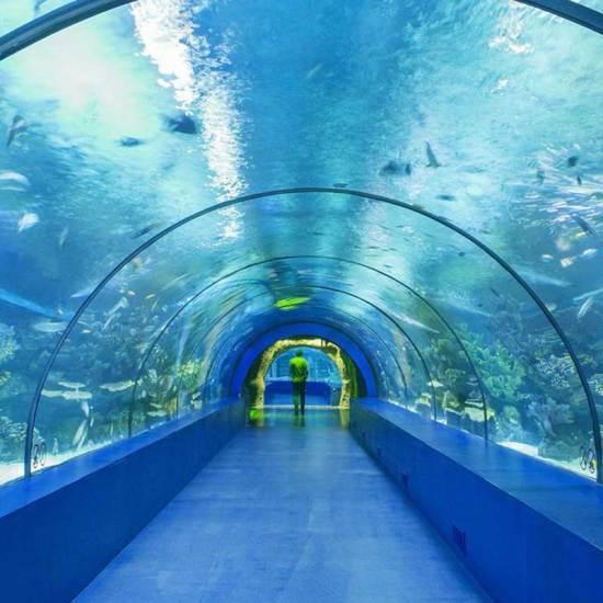 Aquarium Antalya Tickets & Transfers