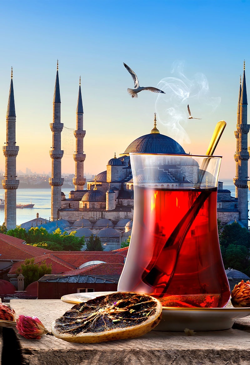 Package Tour Istanbul Trabzon Uzungol 13 days The best package tour for Istanbul and Black sea region.
