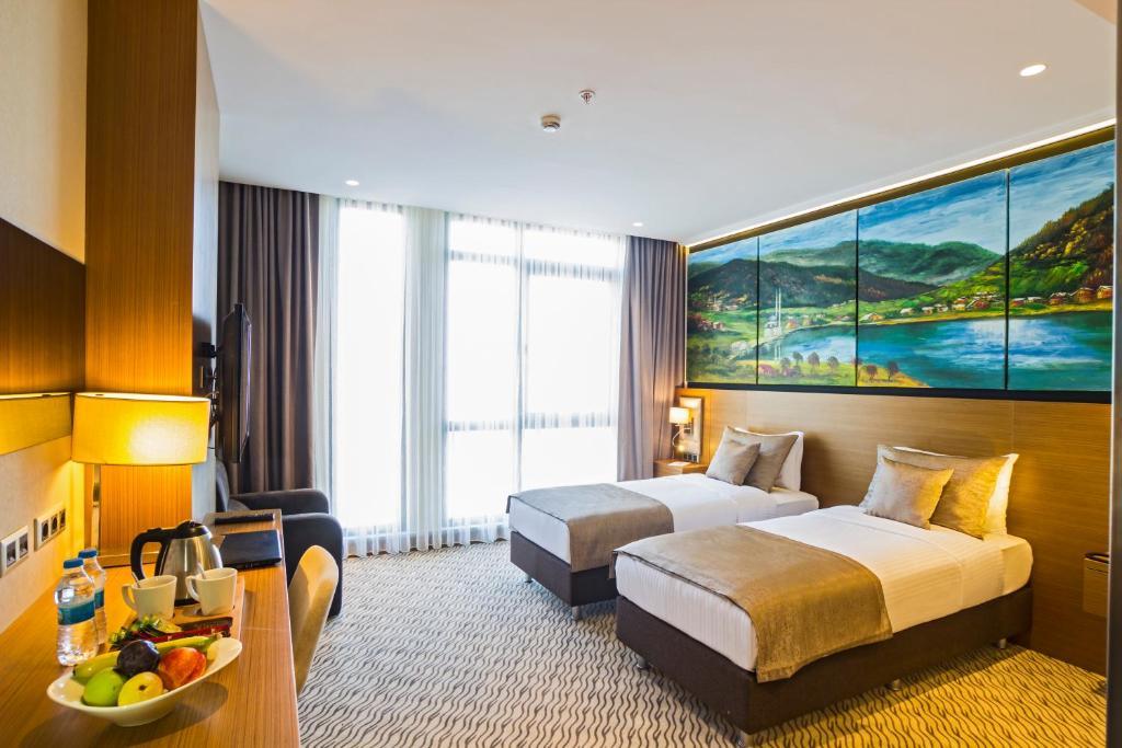 غرفة قياسية بسرير مزدوج أو سريرين توأمين مع إطلالة على المدينة.